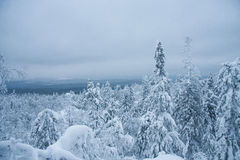 Fairytale winter forest. Taganay. Russia Royalty Free Stock Photo