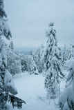 Fairytale winter forest. Taganay. Russia Royalty Free Stock Image