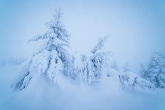 Fairytale winter landscape Stock Image