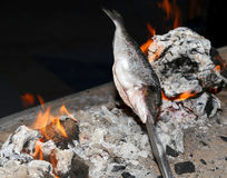 Faisant cuire des poissons grillés Photo stock