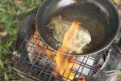 faisant cuire la friture les poissons sur le camping dans la forêt Photographie stock