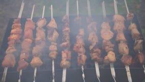 Faisant cuire le barbecue sur la fin de brasero  clips vidéos