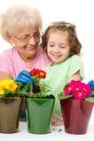 Faisant du jardinage, plantant des concepts Photo stock