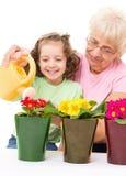 Faisant du jardinage, plantant des concepts Image stock