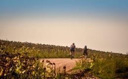Faisant du vélo en Roumanie, vers le rivage de Danube, par un champ de maïs de tournesol Images stock