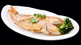 Faisant frire les poissons et le brocoli de vivaneau d'isolement sur le backgroun noir Image libre de droits