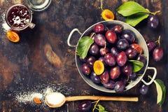 Faisant la prune bloquer Photographie stock