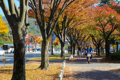 Faisant un cycle dans Gyeongju, la Corée Image stock