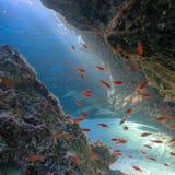 Faisceau de Sun dans l'eau Image stock