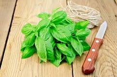 Faisceau de vert de Basil avec la ficelle Image libre de droits