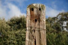 Faisceau en bois avec le visage Poupée en bois Image libre de droits