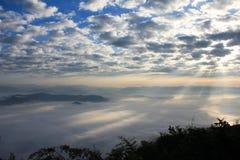 Faisceau et brouillard Photos libres de droits