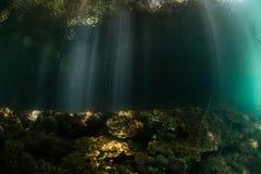 Faisceaux de lumière et des ombres en lagune du ` s des Palaos Photos stock