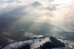 Faisceaux de lumière le matin d'hiver photo libre de droits