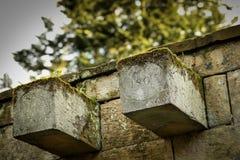 Faisceaux en pierre moussus Images stock