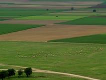 Fait avec des moutons Photographie stock