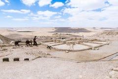Fait des silhouettes en métal d'un homme avec des ânes et un chien et d'établissement vinicole dans les ruines de la ville Avdat  images libres de droits