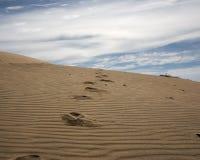 fait un pas le sanddune Images libres de droits
