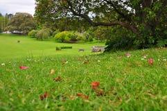 Faites bon accueil de retour au ressort, le parc de Cromwell, NZ images libres de droits