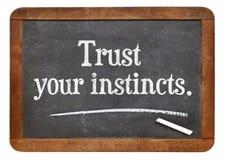 Faites confiance à vos instincts Images libres de droits