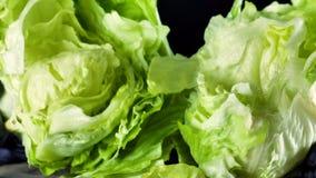 Faites cuire les coupures dans les mains de la salade 'Iceberg' sur un fond noir clips vidéos
