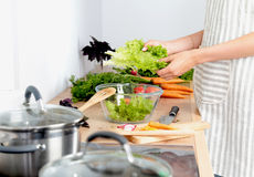 Faites cuire les mains du ` s préparant la salade végétale - tir de plan rapproché Images stock