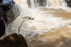 Faites de la frivolité la cascade de tonne dans la saison des pluies tôt chez Chaiyaphum Thaïlande Image stock