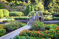Faites du jardinage à la montagne d'inthanon, Chiang Mai, Thaïlande Images libres de droits