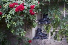 Faites du roller les patins intégrés en nature Image stock