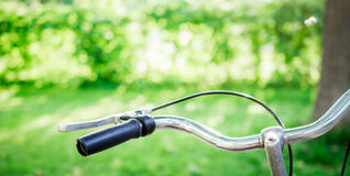 Faites du vélo en parc un jour ensoleillé Photo stock
