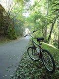 Faites du vélo le journal dans la lumière Photo stock