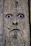 Faites face en bois 2 Images stock