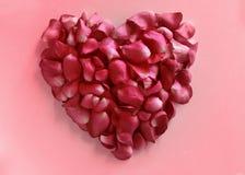 Faites le coeur à partir des pétales de rose Photographie stock