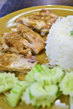 Faites le riz cuire au four de poulet de la Thaïlande Photographie stock