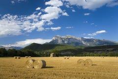 Faites les foins les cautions avec des vues rapides de Parque National de Ordesa près d'Ainsa, Huesca, Espagne en montagnes de Py Photos libres de droits