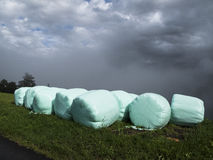 Faites les foins les cautions par temps pluvieux protégé par les plastiques agricoles Images stock