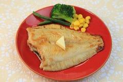Faites sauter des poissons plats Photos libres de droits