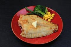 Faites sauter des poissons plats Photo stock