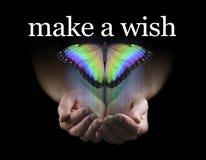 Faites un souhait sur ce beau papillon d'arc-en-ciel photos libres de droits