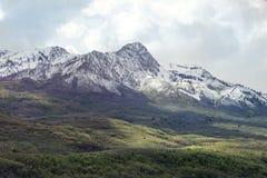 Faites une pointe avec les montagnes couvertes par neige de l'Utah avec rouler les collines vertes Image libre de droits