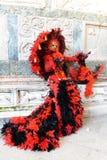 Femme masquée rouge et noire de plume Photo libre de droits