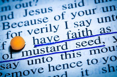 Faith as mustard seed. A macro shot of a Bible text with the words of Jesus: Have faith as small as of mustard seed  (New Testament, Gospel of Luke 17,6 Royalty Free Stock Images