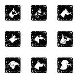 Faithful friend dog icons set, grunge style Royalty Free Stock Photography