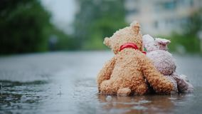Faithful friends - a bunny and a bear cub sit side by side on the road, wet under the pouring rain. Look forward. Embrace Royalty Free Stock Images
