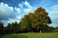 Faiwater park. Autumn Fairwater park with blue sky, white clouds royalty free stock images