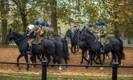 A faixa da cavalaria do agregado familiar Imagens de Stock Royalty Free
