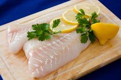Faixa de peixes crus Imagens de Stock