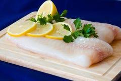 Faixa de peixes crus Fotografia de Stock Royalty Free