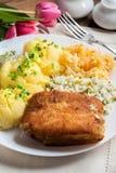 Faixa de peixes fritada do bacalhau Imagem de Stock Royalty Free