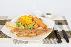 Faixa de peixes grelhada com batatas fritas e salada imagem de stock